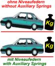 Auxiliary Springs Chevi