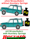 Auxiliary Springs Lada