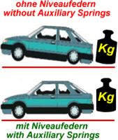 Auxiliary Springs Dw