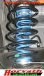 Auxiliary Springs (Helper-Springs) Citroen C4  Picasso,...